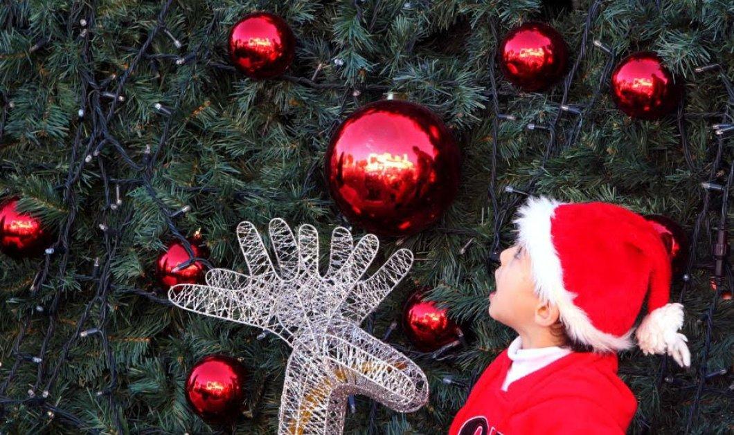 Χανιά - Παρ'ολίγον τραγωδία για μικρό μαθητή: Έπαθε ηλεκτροπληξία από τα λαμπάκια στο Χριστουγεννιάτικο δέντρο του σχολείου   - Κυρίως Φωτογραφία - Gallery - Video