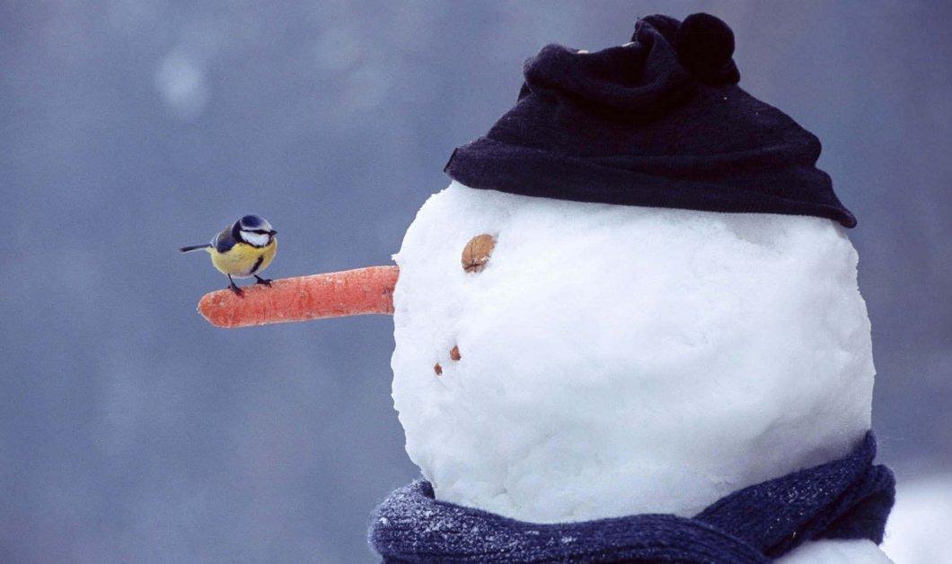Έρχονται χιόνια και δριμύ ψύχος σε όλη τη χώρα - Δείτε την πρόβλεψη της ΕΜΥ για τις επόμενες μέρες - Κυρίως Φωτογραφία - Gallery - Video
