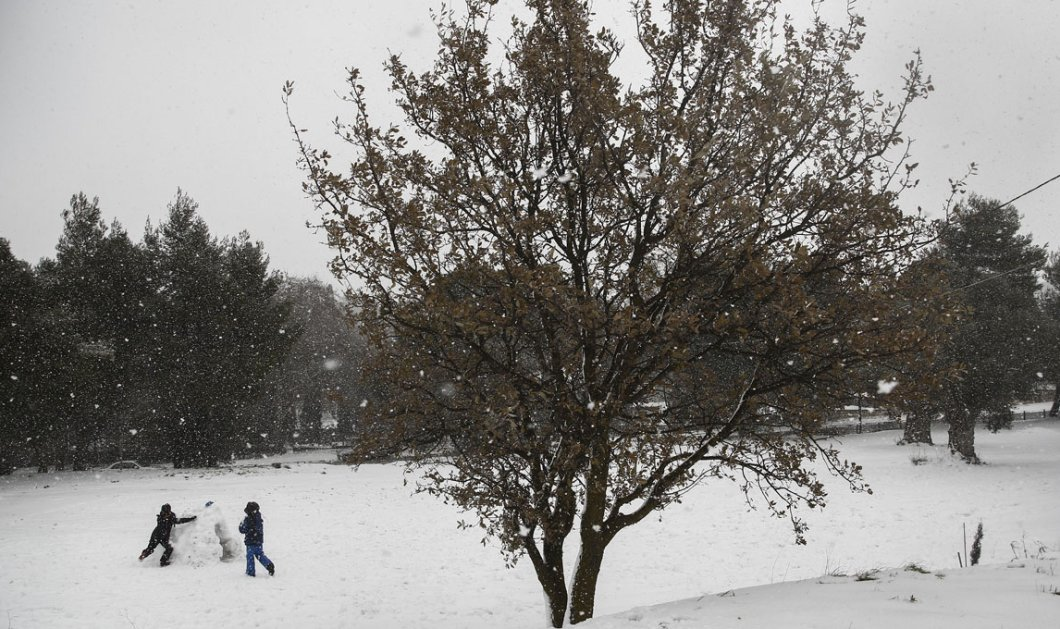 Παγωμένο Σάββατο: Στο έλεος του χιονιά Αριάδνη όλη η χώρα - Πού χρειάζονται αλυσίδες - Κυρίως Φωτογραφία - Gallery - Video
