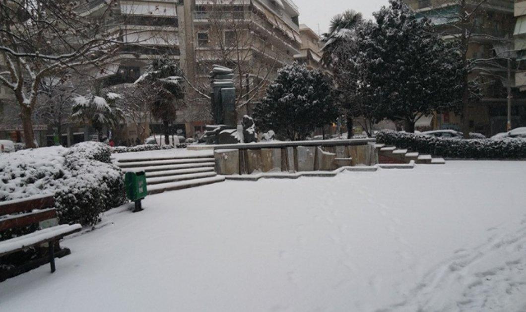 Πάμε για σκι στο κέντρο της Λάρισας; O νεαρός φόρεσε τα πέδιλα του & άρχισε την ''κατάβαση'' - Κυρίως Φωτογραφία - Gallery - Video