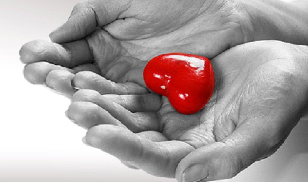 Ζωή σε 6 ανθρώπους χάρισε 51χρονη Μυτιληνιά: Η καρδιά της στην Βιέννη, οι πνεύμονες σε ασθενή στην Κροατία  - Κυρίως Φωτογραφία - Gallery - Video