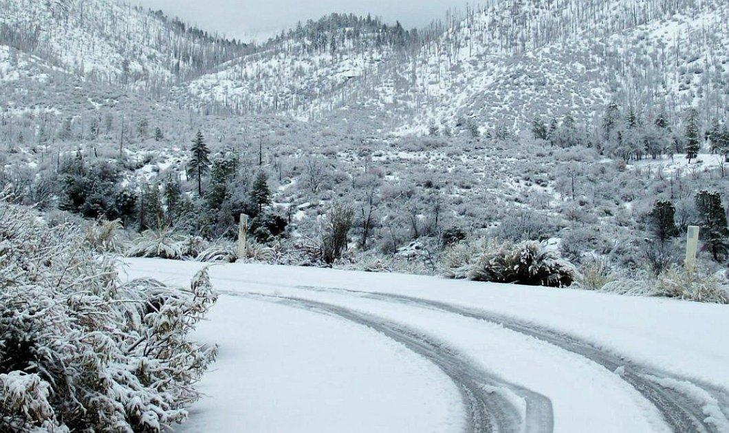 Ποια σχολεία θα μείνουν κλειστά στην Βόρεια Ελλάδα - Τα χιόνια απέκλεισαν πάλι δήμους σε Ήπειρο & Δ. Μακεδονία   - Κυρίως Φωτογραφία - Gallery - Video