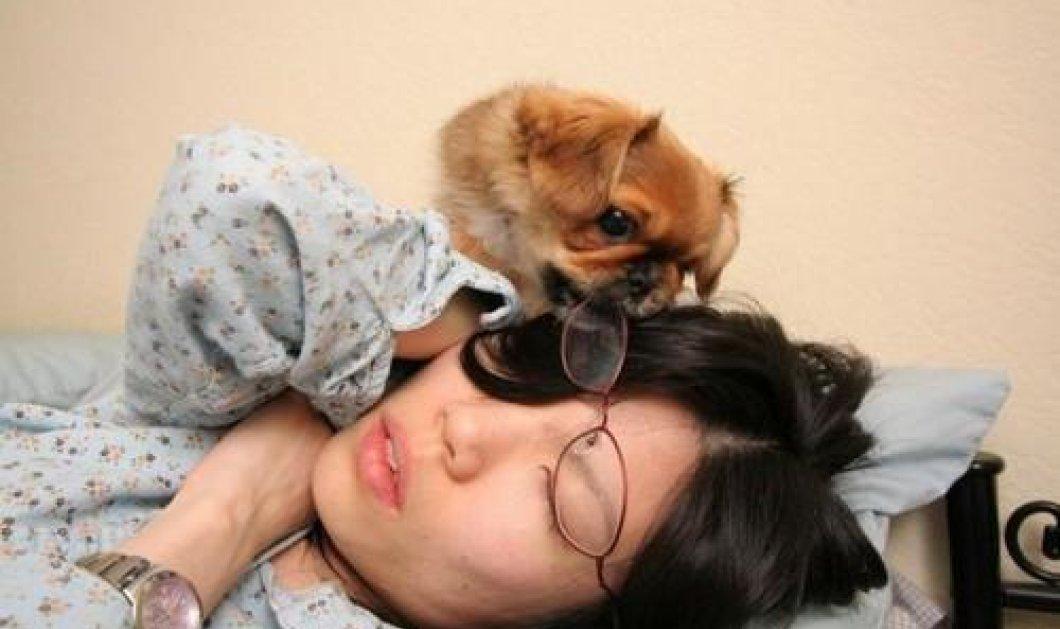 Σκύλοι ξυπνούν τα αφεντικά τους με τον πιο αστείο τρόπο - Video  - Κυρίως Φωτογραφία - Gallery - Video