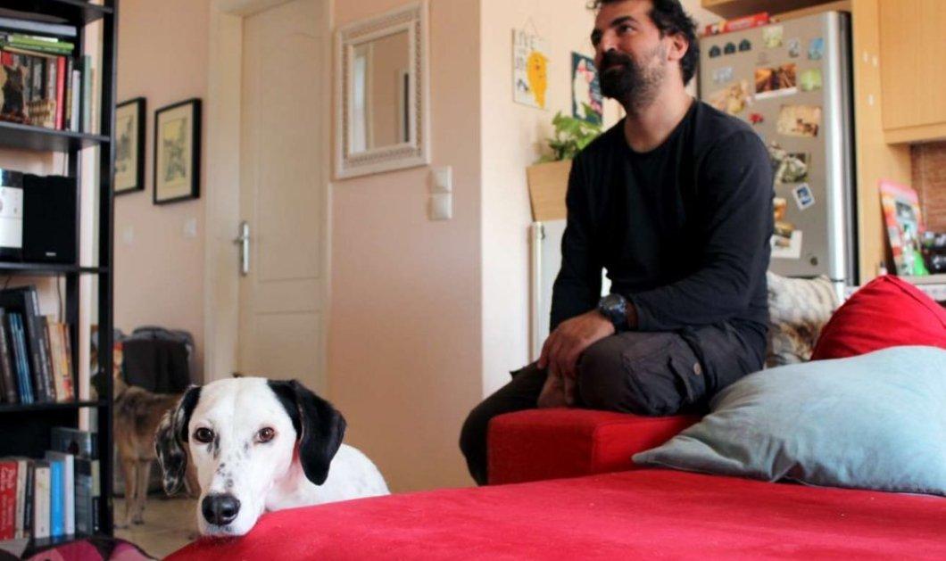 Made in Greece: Ο Βασίλης Τζιγκούρας φτιάχνει αναπηρικά αμαξίδια για ζώα και έτσι περπατούν πάλι 250 ζωάκια   - Κυρίως Φωτογραφία - Gallery - Video