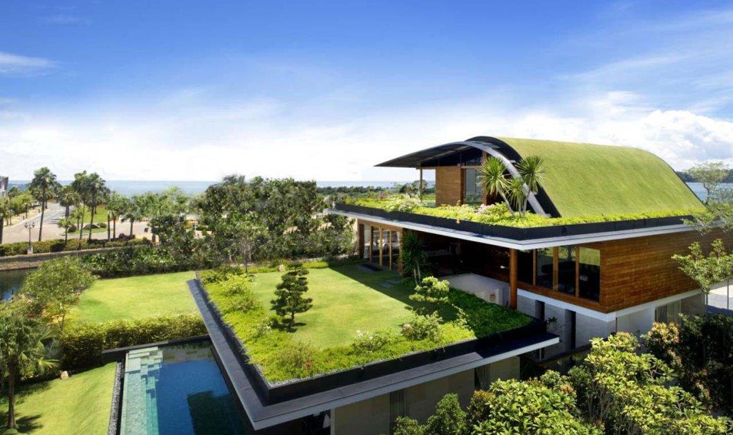 Καταπράσινοι κήποι με φυτά, λουλούδια, δέντρα στις στέγες των σπιτιών, των κτιρίων, παντού! Τα οφέλη   - Κυρίως Φωτογραφία - Gallery - Video