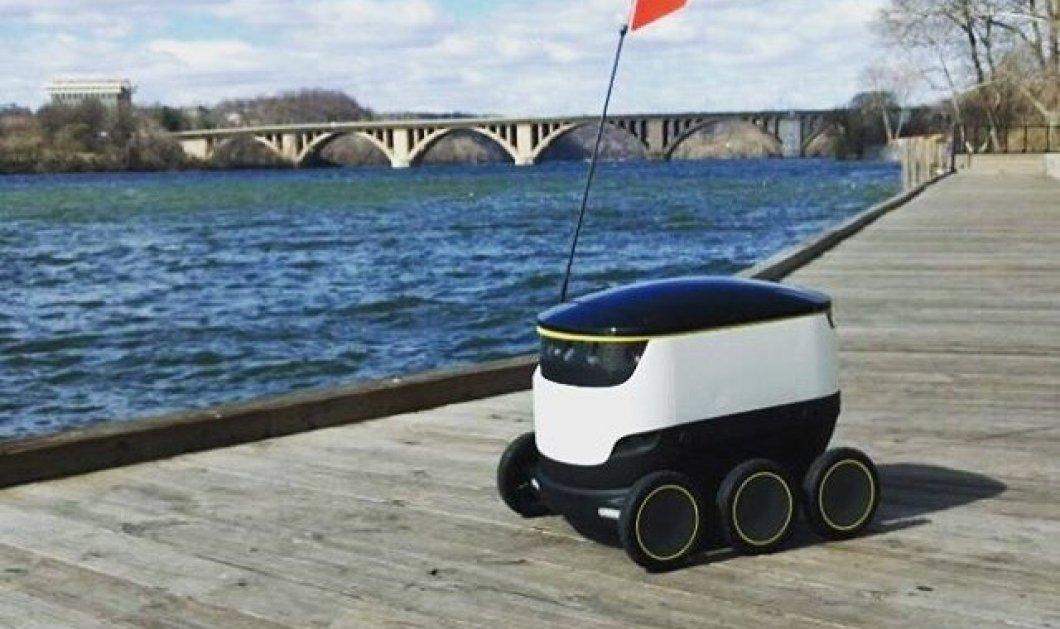 Η πίτσα στο σπίτι σας θα έρχεται από εδώ και πέρα με ρομπότ -  Πρωτοπόρο delivery - Κυρίως Φωτογραφία - Gallery - Video