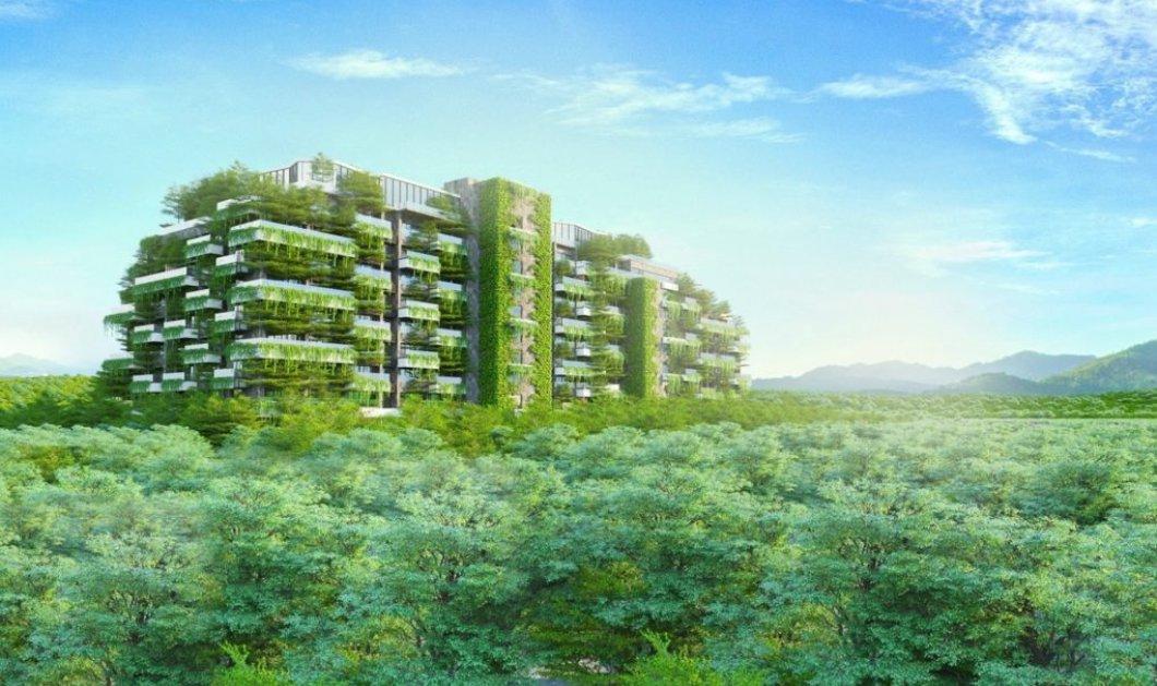 Αυτό είναι το πιο πράσινο κτήριο στον κόσμο: Έχει 55.000 δέντρα & χιλιάδες στρέμματα γκαζόν -Φώτο - Κυρίως Φωτογραφία - Gallery - Video