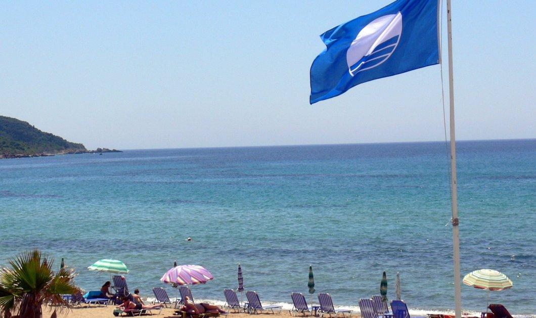 Ρεκόρ η Χαλκιδική: Όλες οι 486 Γαλάζιες Σημαίες της Ελλάδας - Η λίστα των παραλιών του 2017 - Κυρίως Φωτογραφία - Gallery - Video