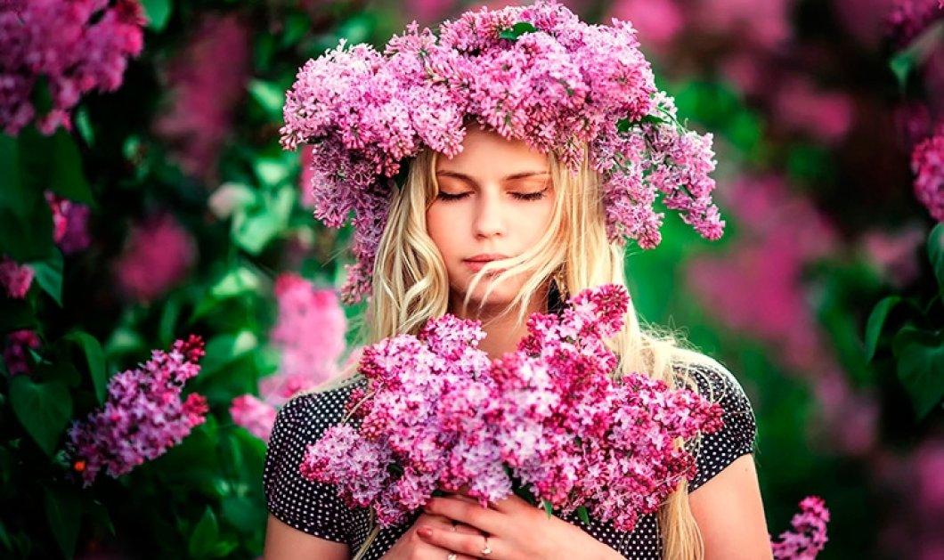 Ποια λουλούδια ταιριάζουν στο ζώδιό σου; Ποια εναρμονίζονται με την αστρολογική σου ενέργεια & ποια να προσφέρεις  - Κυρίως Φωτογραφία - Gallery - Video