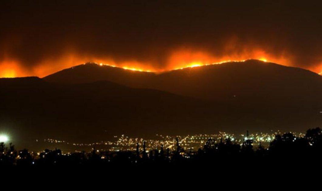 Πάρνηθα 2007-2017: 10 χρόνια μετά τη μεγάλη πυρκαγιά: Ένα ντοκιμαντέρ & αμείλικτοι αριθμοί - Κυρίως Φωτογραφία - Gallery - Video