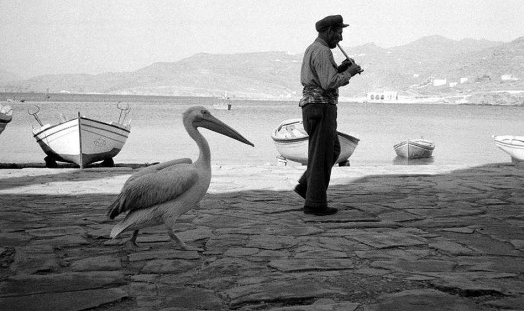 30 vintage εικόνες από το ρετρό καλοκαίρι στην Ελλάδα - Κυρίως Φωτογραφία - Gallery - Video