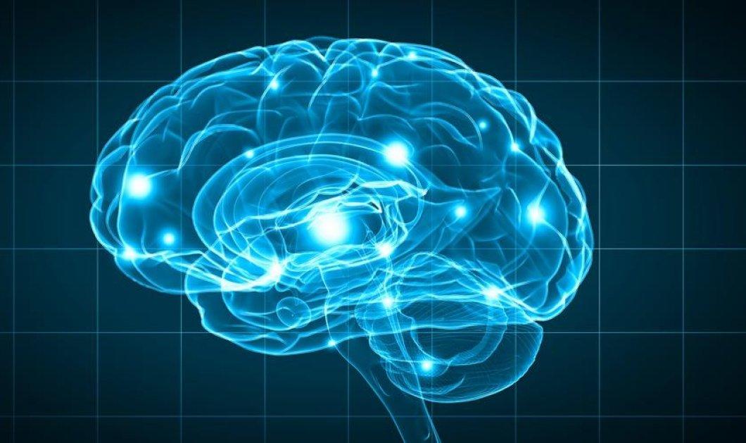 Έρευνα: Ποια είναι τα κύτταρα στον εγκέφαλο που ελέγχουν τη γήρανση - Σε ποιο σημείο βρίσκονται - Κυρίως Φωτογραφία - Gallery - Video