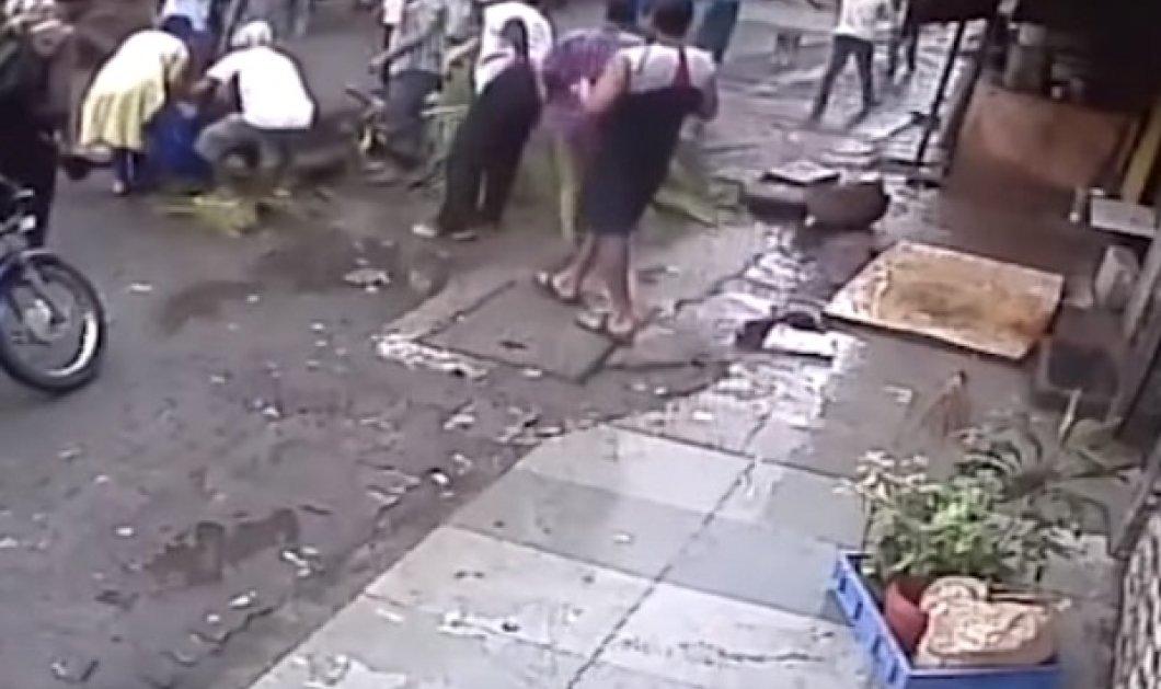 Βίντεο: Ο φρικτός θάνατος 58χρονης παρουσιάστριας από πτώση φοίνικα - Η μοιραία στιγμή στον φακό - Κυρίως Φωτογραφία - Gallery - Video