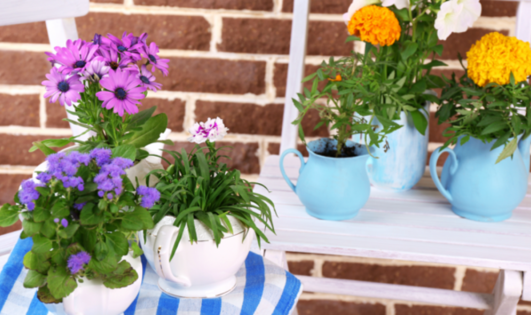 Ο Σπύρος Σούλης μας δείχνει: Να πως θα κάνετε την μικρή βεράντα σας κηπάκο παραδεισένιο - Κυρίως Φωτογραφία - Gallery - Video