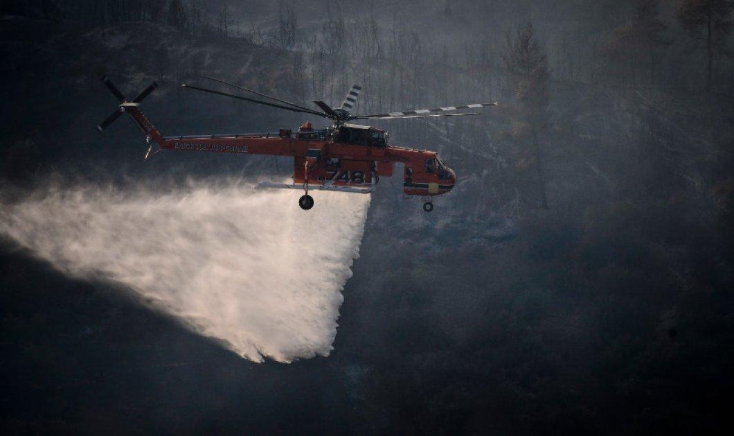 Πυροσβεστική: Σε εξέλιξη οι φωτιές σε Ανατ. Αττική, Ηλεία και Ζακύνθο   - Κυρίως Φωτογραφία - Gallery - Video