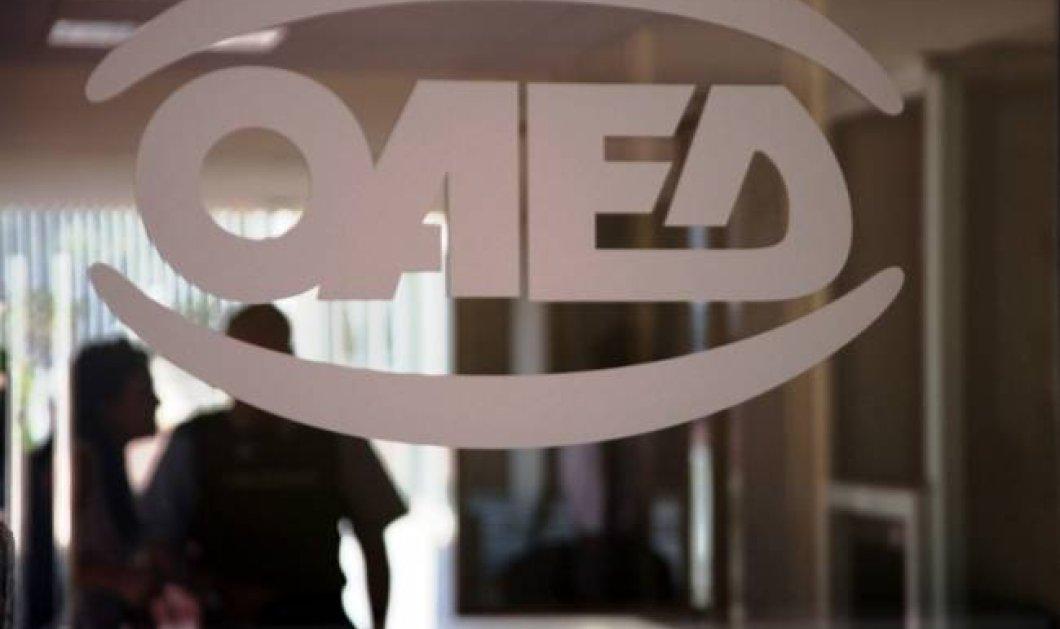 ΟΑΕΔ: Νέο πρόγραμμα για 10.000 θέσεις σε ΟΤΑ και Δημόσιο - Κυρίως Φωτογραφία - Gallery - Video