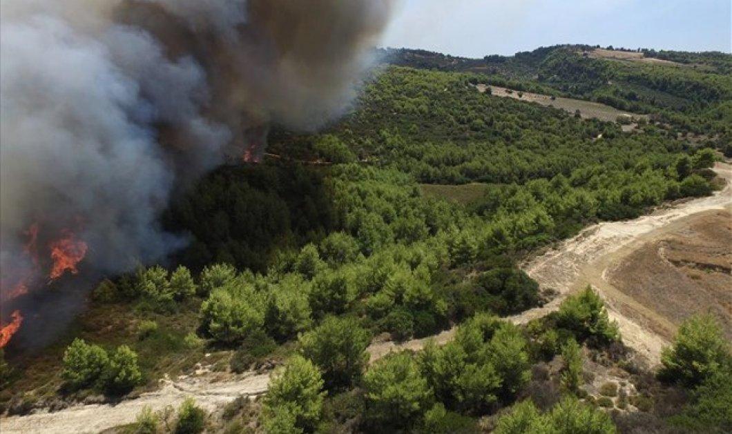 Βίντεο από drone: Το μέτωπο της φωτιάς στην Ανάληψη Ηλείας - Κυρίως Φωτογραφία - Gallery - Video