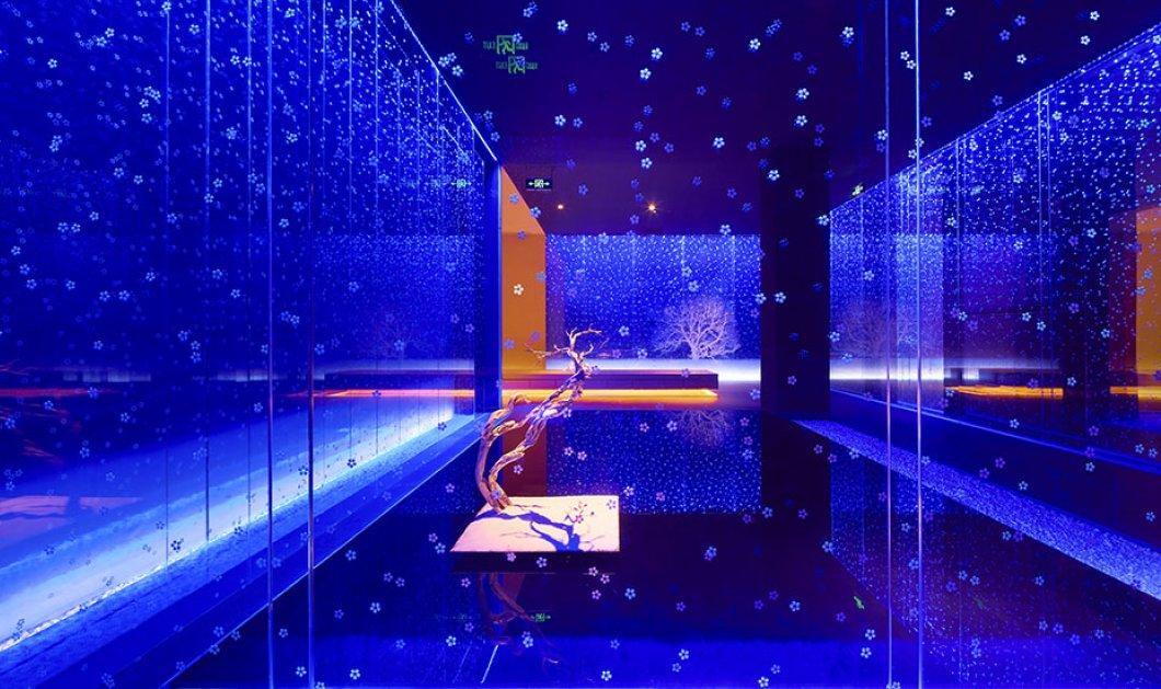 Εκθαμβωτικό εστιατόριο άνοιξε στην Κίνα - δείτε την διακόσμηση υπερπαραγωγή στις φωτογραφίες - Κυρίως Φωτογραφία - Gallery - Video