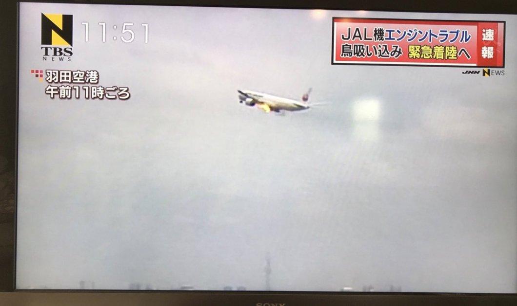 Αναγκαστική προσγείωση αεροσκάφους στο αεροδρόμιο του Τόκιο άρπαξε φωτιά από πουλί που μπήκε στον κινητήρα - Κυρίως Φωτογραφία - Gallery - Video