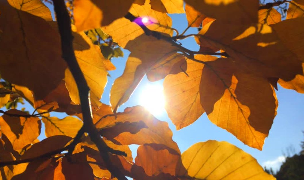 O καιρός σήμερα: Που θα φτάσει η θερμοκρασία!  - Κυρίως Φωτογραφία - Gallery - Video