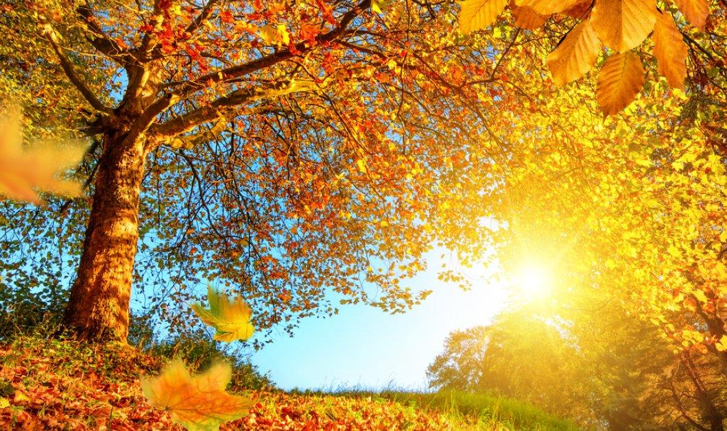 Ο καιρός σήμερα: Ηλιοφάνεια με λίγες νεφώσεις - Η θερμοκρασία θα φτάσει τους 27 βαθμούς - Κυρίως Φωτογραφία - Gallery - Video