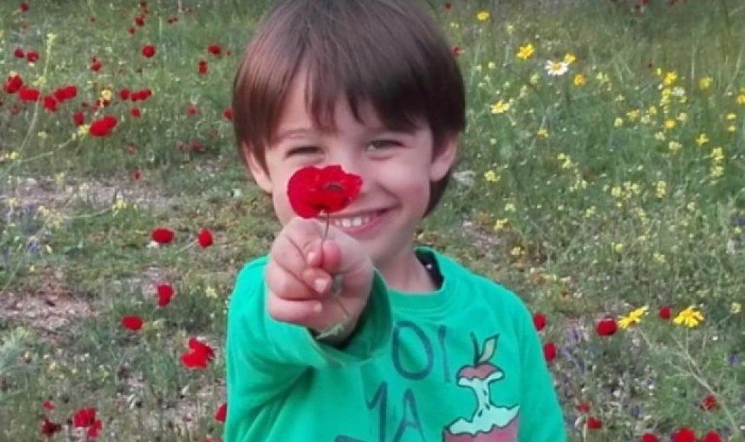 Aς βοηθήσουμε όλοι τον 4χρονο Χριστόφορο που πάσχει από σπάνια μορφή καρκίνου στον εγκέφαλο - Κυρίως Φωτογραφία - Gallery - Video