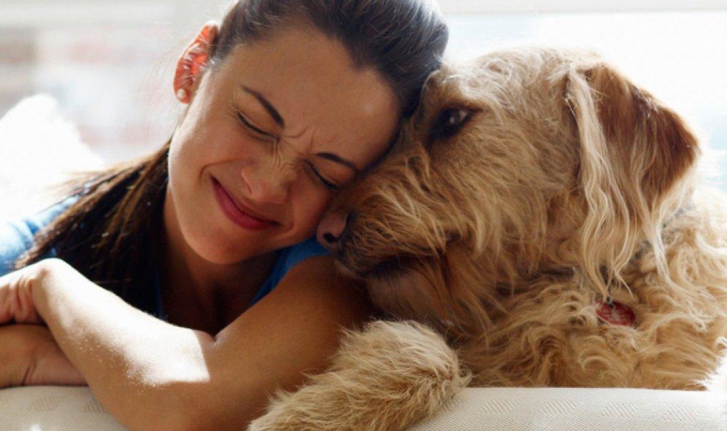 Ιταλίδα εξασφάλισε άδεια μετά αποδοχών για να φροντίσει τον σκύλο της  - Κυρίως Φωτογραφία - Gallery - Video