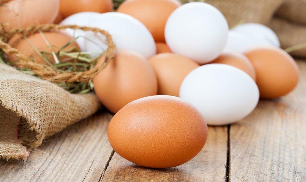 Aυγό: Η παρεξηγημένη τροφή με την σημαντική θρεπτική αξία - Διατροφικοί μύθοι & αλήθειες  - Κυρίως Φωτογραφία - Gallery - Video