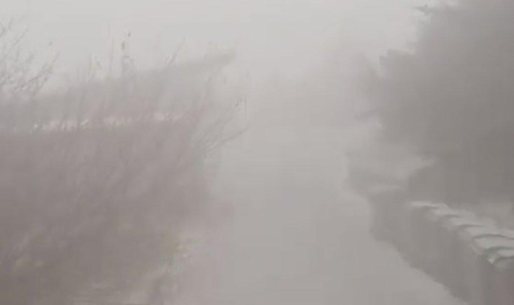Βίντεο: Εντυπωσιακές εικόνες από τη χιονοθύελλα στην Πάρνηθα!  - Κυρίως Φωτογραφία - Gallery - Video
