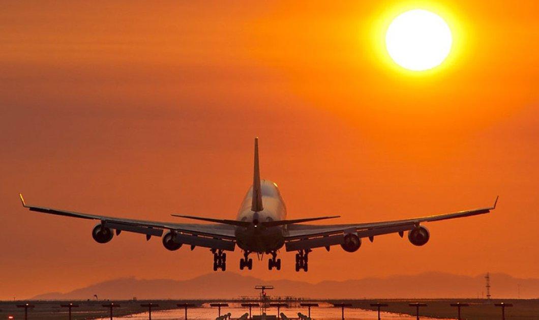 Ρόδος: Αεροσκάφος χτύπησε αγέλη σκύλων την ώρα της απογείωσης - Κυρίως Φωτογραφία - Gallery - Video