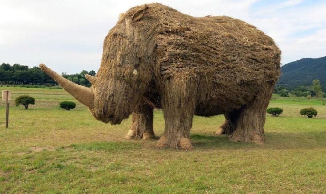 Έργα τέχνης που δεν είχατε ποτέ φανταστεί: Γιγαντιαία αγάλματα ζώων ... από ρύζι! (ΦΩΤΟ) - Κυρίως Φωτογραφία - Gallery - Video