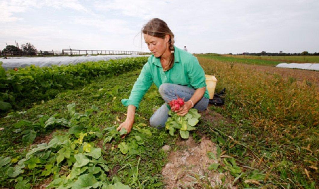 Καλά νέα για τις πολύτεκνες αγρότισσες: Πριν τις γιορτές η καταβολή του βοηθήματος των 1000 ευρώ - Κυρίως Φωτογραφία - Gallery - Video