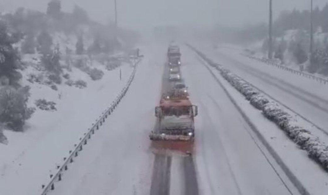Σοβαρά προβλήματα από τον χιονιά: Δίπλωσαν νταλίκες στην εθνική οδό Αθηνών – Λαμίας    - Κυρίως Φωτογραφία - Gallery - Video
