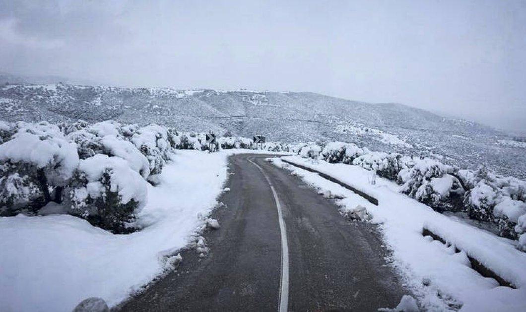 Προσοχή λόγω παγετού στην Κεντρική Μακεδονία: Πού χρειάζονται αντιολισθητικές αλυσίδες   - Κυρίως Φωτογραφία - Gallery - Video