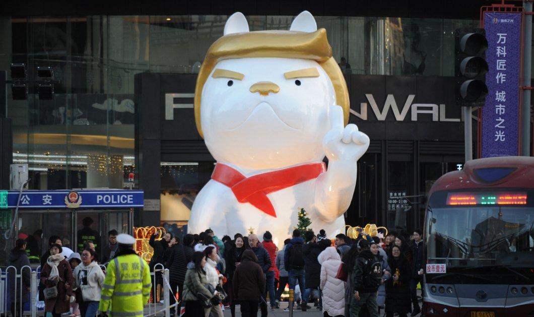 """Κίνα: O Ντόναλντ Τραμπ έγινε....""""χαριτωμένο"""" μπουλντόγκ για να τιμήσει τη """"χρονιά του σκύλου"""" (ΦΩΤΟ-ΒΙΝΤΕΟ) - Κυρίως Φωτογραφία - Gallery - Video"""