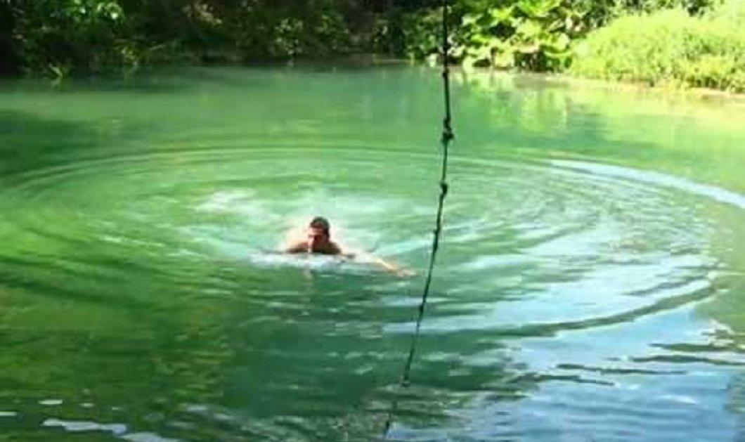 Ξεκαρδιστικό ή τρομακτικό; Έπσεσε στη λίμνη να κολυμπήσει- Βγήκε σαν τρελός από τα τσιμπήματα των ψαριών (ΒΙΝΤΕΟ) - Κυρίως Φωτογραφία - Gallery - Video