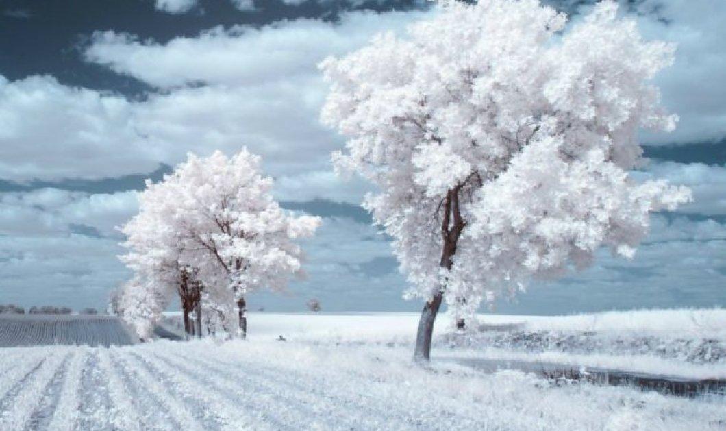 Το χιόνι πάντα μας μαγεύει τις γιορτινές μέρες: Εκπληκτικά ολόλευκα τοπία της Πολωνίας σε απίθανα κλικς που εντυπωσιάζουν! - Κυρίως Φωτογραφία - Gallery - Video