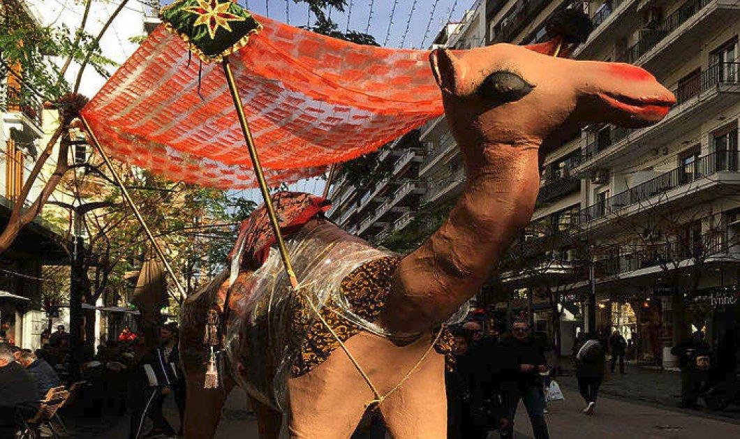 """Τρεις καμήλες """"κόβουν βόλτες"""" στο κέντρο της Θεσσαλονίκης για καλό σκοπό  - Κυρίως Φωτογραφία - Gallery - Video"""