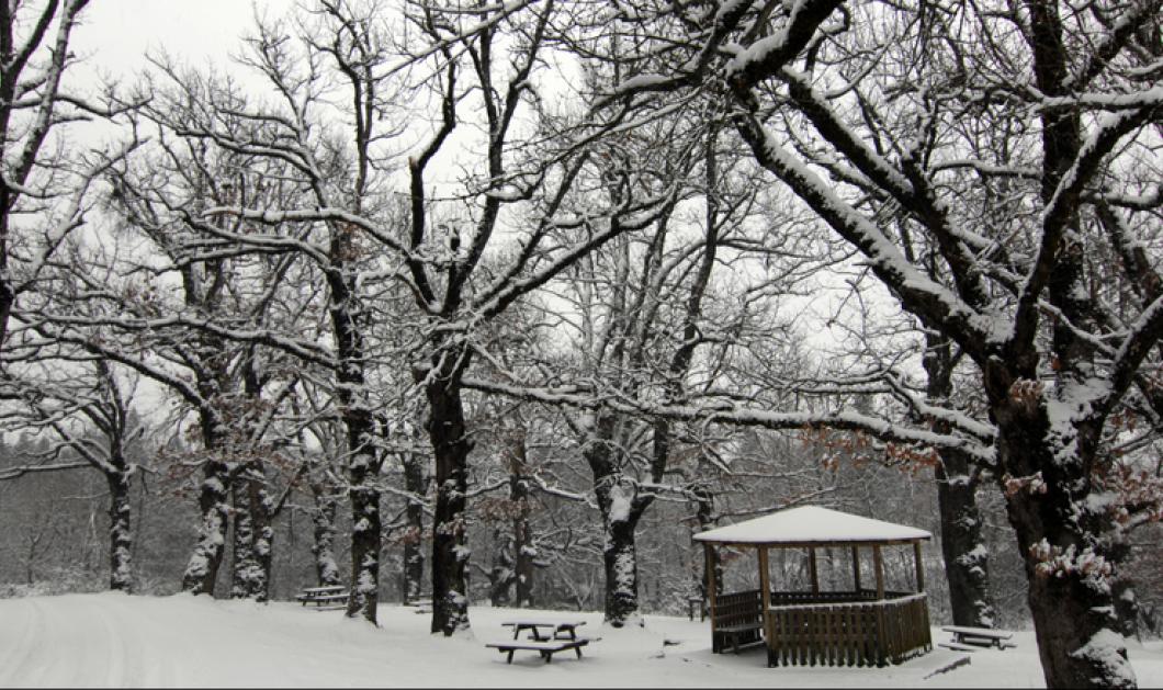 Καρέ - καρέ η ιστορική χιονοθύελλα που έσπασε κάθε ρεκόρ στην Πενσυλβάνια  - Κυρίως Φωτογραφία - Gallery - Video