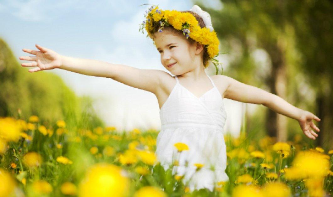 Μοναδικής ομορφιάς βίντεο μας φτιάχνει τη μέρα! Όταν πολύχρωμα & υπέροχα λουλούδια χορεύουν βαλς... (ΒΙΝΤΕΟ) - Κυρίως Φωτογραφία - Gallery - Video
