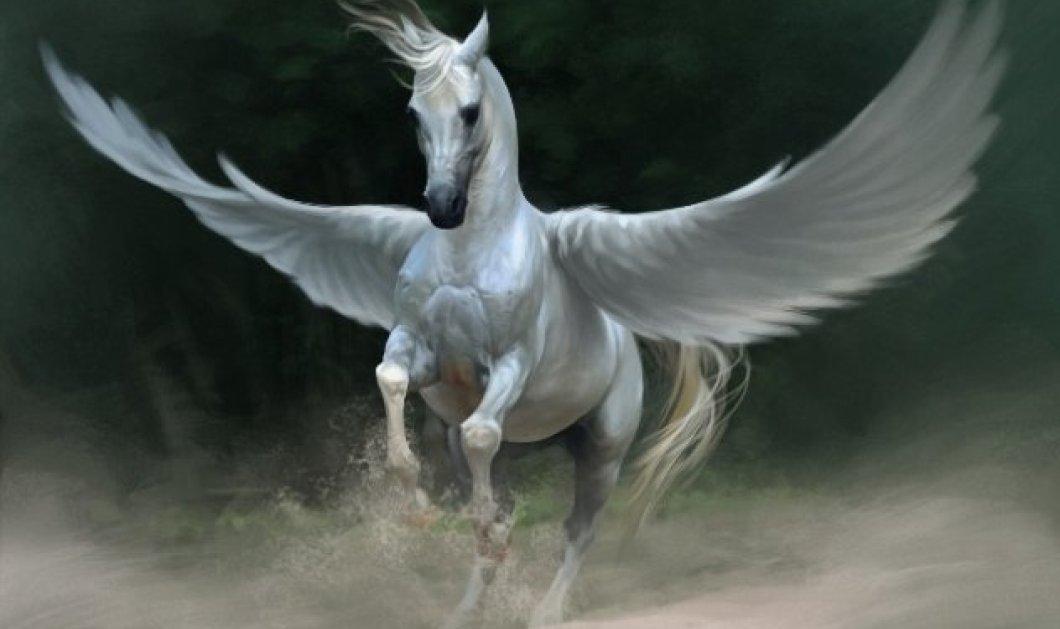 Greek Mythos: Πήγασος: Το θρυλικό ιπτάμενο άλογο του Βελλεροφόντη και ο αστερισμός του - Τι απέγινε ένα από τα πιο γνωστά μυθολογικά πλάσματα με το πέρασμα των αιώνων; - Κυρίως Φωτογραφία - Gallery - Video