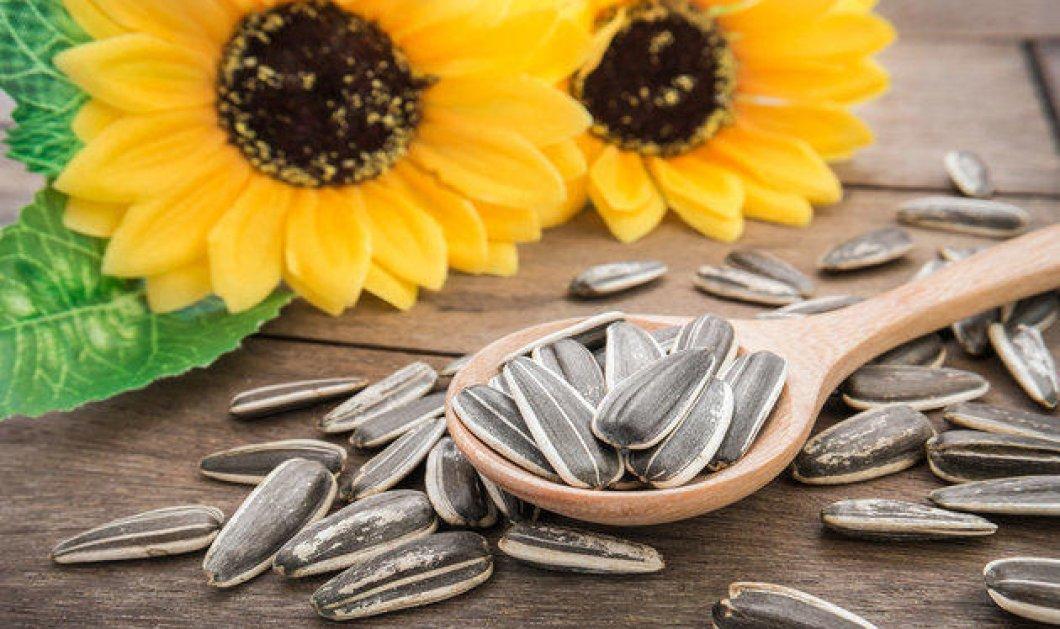 Αυτά είναι τα 9 είδη σπόρων που πρέπει να βάλεις στην διατροφή σου για μια καλύτερη υγεία!   - Κυρίως Φωτογραφία - Gallery - Video