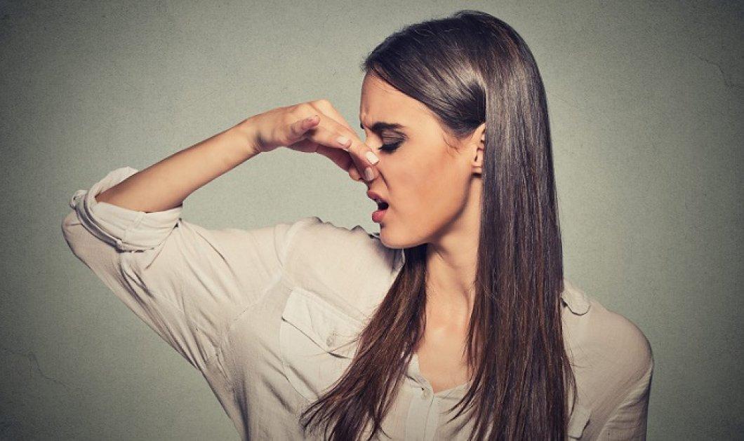 Νέα μελέτη: Πως επηρεάζει η ευαισθησία στις οσμές του σώματος τις πολιτικές επιλογές & ποια είναι η συσχέτισή τους;  - Κυρίως Φωτογραφία - Gallery - Video