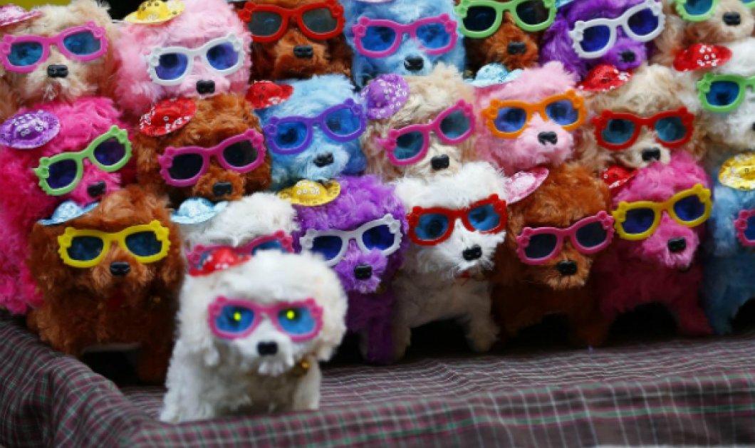 Χαρούμενη Χρυσή Πρωτοχρονιά του σκύλου & των απανταχού Κινέζων: Φωτό από τις φαντασμαγορικές εκδηλώσεις στον πλανήτη - Κυρίως Φωτογραφία - Gallery - Video