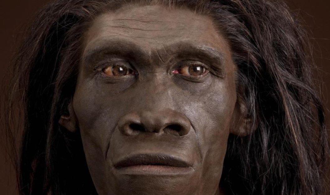Good news από τους επιστήμονες: Ο Homo erectus ήταν ο πρώτος που μίλησε & ο πρώτος ταξιδιώτης  - Κυρίως Φωτογραφία - Gallery - Video