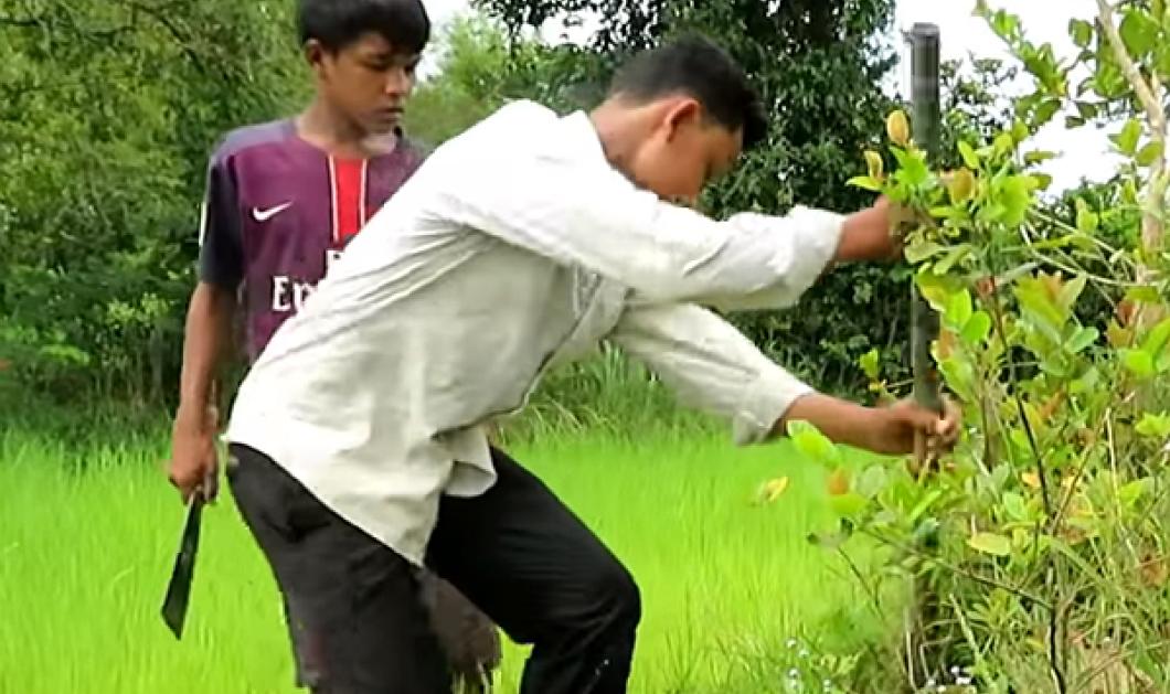 Βίντεο: 3 ατρόμητες αδελφούλες & 2 γενναία αγοράκια βγάζουν τεράστια φίδια μέσα από το νερό!  - Κυρίως Φωτογραφία - Gallery - Video