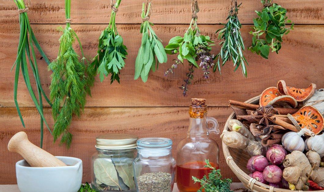 Χρησιμοποιήστε τα βότανα για καλύτερη υγεία - Το φαρμακείο της φύσης στο πιάτο σας - Κυρίως Φωτογραφία - Gallery - Video