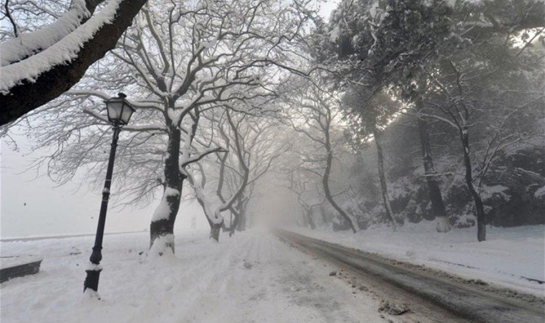 Έντονη κακοκαιρία σε κεντρική & βόρεια Ελλάδα: Χιόνια και κλειστά σχολεία σε πολλές περιοχές (ΦΩΤΟ - ΒΙΝΤΕΟ)  - Κυρίως Φωτογραφία - Gallery - Video