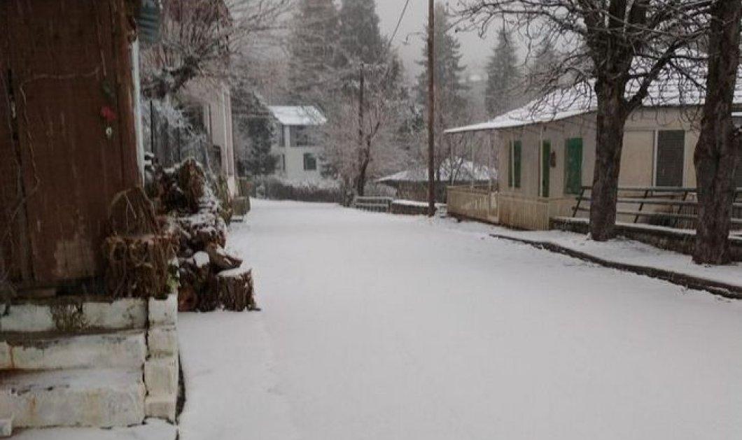 Νέο κύμα κακοκαιρίας: Σε ποιες περιοχές έχει στρώσει χιόνι & που χρειάζονται αντιολισθητικές αλυσίδες (ΦΩΤΟ - ΒΙΝΤΕΟ) - Κυρίως Φωτογραφία - Gallery - Video