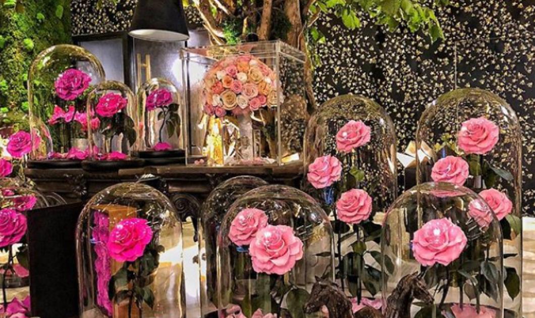 Αυτά τα τριαντάφυλλα δεν μαραίνονται ποτέ - Εκθαμβωτικά αθάνατα για πάνω από 20 χρόνια (ΦΩΤΟ - ΒΙΝΤΕΟ) - Κυρίως Φωτογραφία - Gallery - Video
